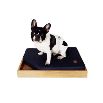 Hvorfor skal din hund have sin egen seng?