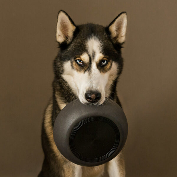 District70 madskål til hund - Bamboo - grå